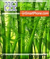 Bamboo forest es el tema de pantalla