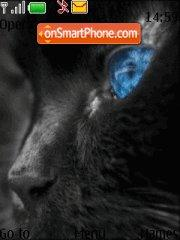 Bblack Blue Cat theme screenshot