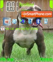 Bull soldiers theme screenshot