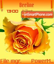 Yellow Rose 01 es el tema de pantalla