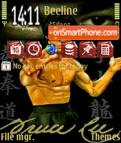 Bruce Lee theme screenshot