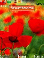 Red Poppies theme screenshot