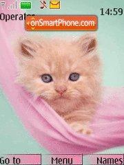 Ginger Catty es el tema de pantalla