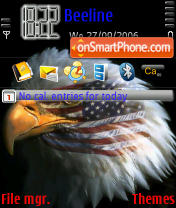 American Eagle 3250 theme screenshot