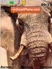 Elephant theme screenshot