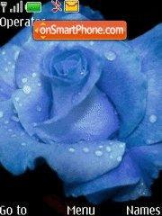 Скриншот темы Blue Rose
