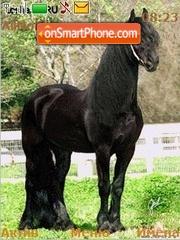 Capture d'écran Black Horse thème