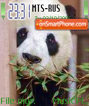 Panda Gao Gao es el tema de pantalla
