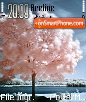 Pink Tree es el tema de pantalla