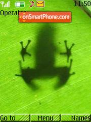 Frog es el tema de pantalla
