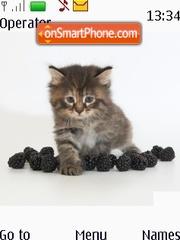 Cat Blackberry theme screenshot