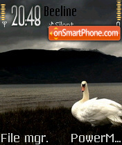 Swan View theme screenshot