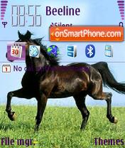 Horses 04 theme screenshot