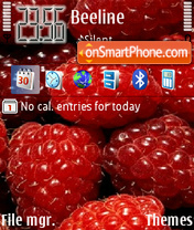 Raspberries theme screenshot