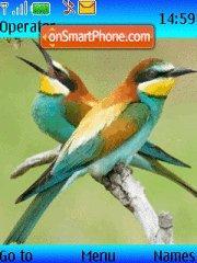Скриншот темы Colorid Birds