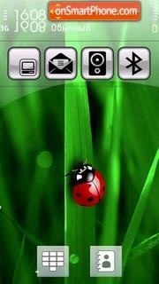 Sunny bug 1 sun es el tema de pantalla