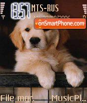 Puppy es el tema de pantalla