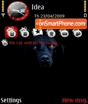 Labrador theme screenshot