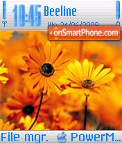 iMAC Flowers theme screenshot