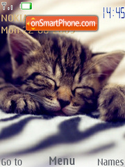 Sleepy Cats theme screenshot