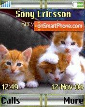 Pussycat theme screenshot