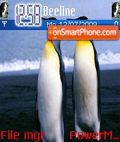 Pinguin theme theme screenshot
