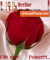 Beautiful Red Rose es el tema de pantalla