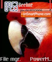 Parrot 03 es el tema de pantalla