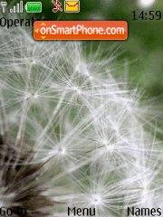 Dandelion theme screenshot