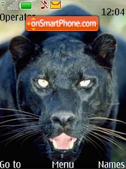 Скриншот темы Panther