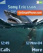 Shark es el tema de pantalla