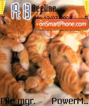 Sleepy Kittens theme screenshot