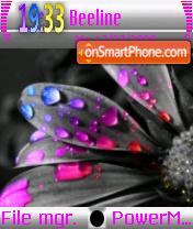 Rainbow Leaf theme screenshot