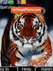 Bangal Tiger theme screenshot