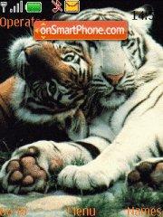 Tigers 02 es el tema de pantalla