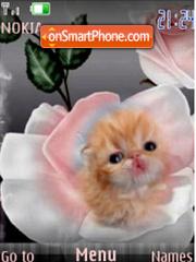 Rose $ Kitten Flash slide Theme-Screenshot