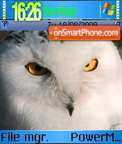 Owl Theme es el tema de pantalla