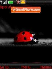 Lady Bug 01 theme screenshot