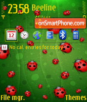 Lady bug 02 theme screenshot