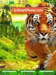 Tiger 16 theme screenshot