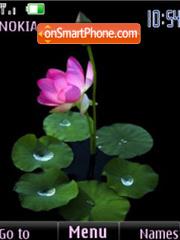 Lotus flash slide theme screenshot