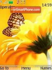 Butterfly 143 es el tema de pantalla