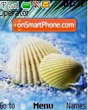 Sea Shell es el tema de pantalla