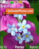Spring Blossoms es el tema de pantalla