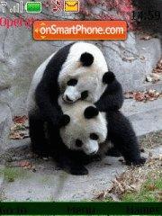 Panda es el tema de pantalla