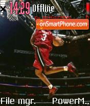 Dwayne Wade 01 theme screenshot