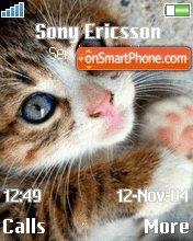 Cat theme screenshot
