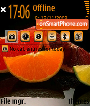 Citrus 01 theme screenshot