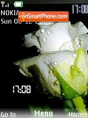 White Rose SWF theme screenshot