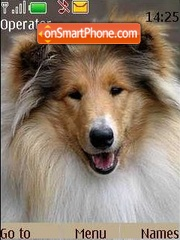 Dog theme screenshot